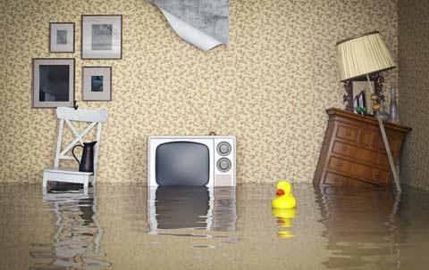 Hausrat Versicherung